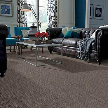 Anso® Nylon Carpet | Mayflower, AR